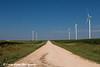 Wind turbine from the Elk Wind Energy Farm in a corn field  with a rural gravel road near Edgewood in Northeast Iowa<br /> <br /> July 08, 2012