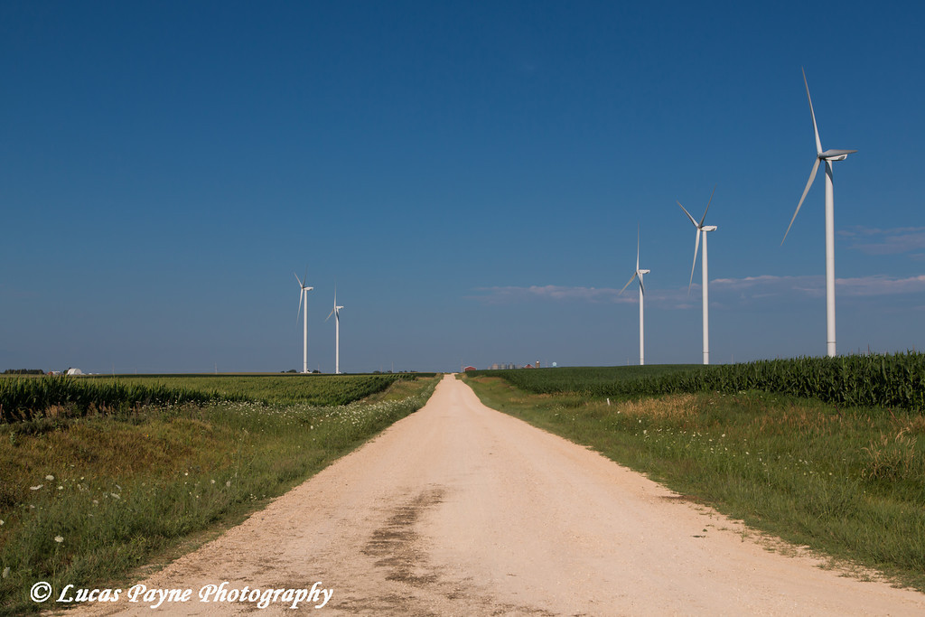 Wind turbine from the Elk Wind Energy Farm in a corn field  with a rural gravel road near Edgewood in Northeast Iowa<br /> <br /> July 08, 2012