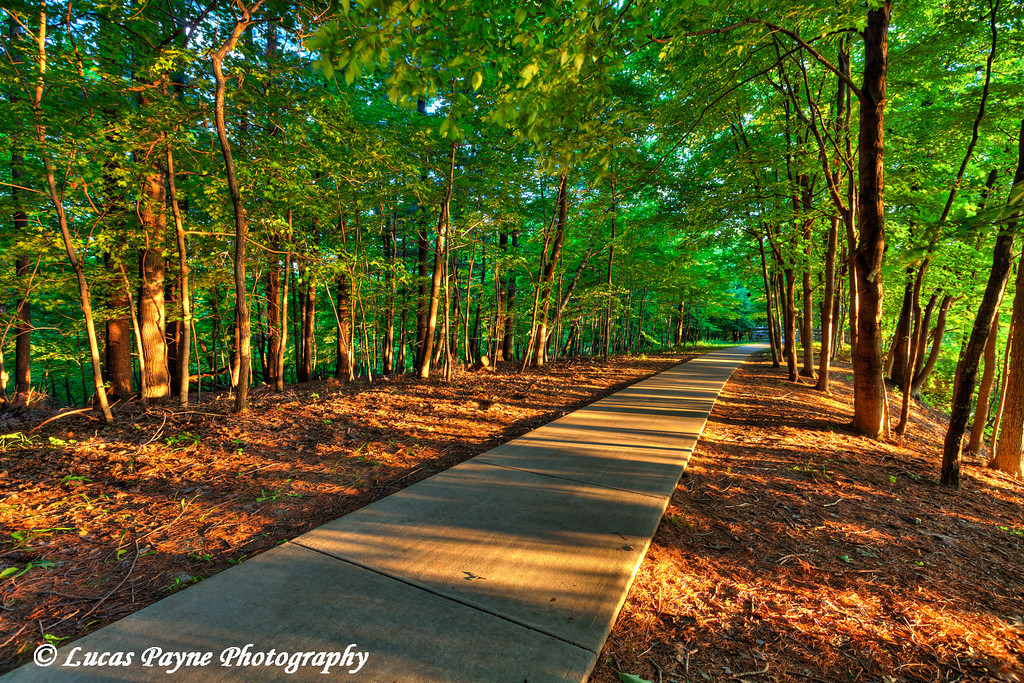 Hiking trail at Pikes Peak State Park in Northeast Iowa.<br /> July 05, 2011<br /> HDR