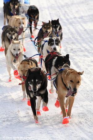 John Beargrease Sled Dog Marathon 2008 in Minnesota 32°F
