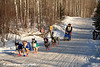 Fourth and final day of the John Beargrease Sled Dog Marathon. Morning temps were -23°F with windchills around -50°F.