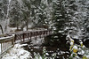 Foot bridge over Amity Creek after the first snow fall of the year (Nov. 9, 2007) <br /> Duluth, MN