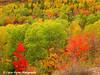 Lookout Mountain Fall Colors Near Virginia, Minnesota.