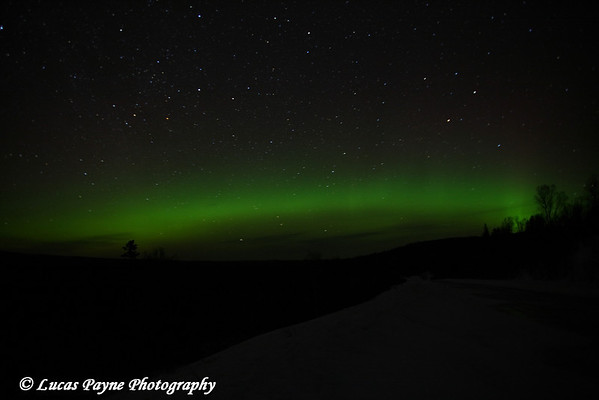 The Aurora Borealis from the Sawbill Trail near Tofte, Minnesota on Friday night February 29, 2008.