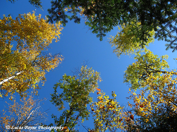 Tettegouche State Park Minnesota