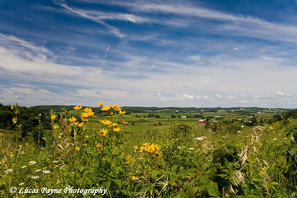 Wisconsin Farmland<br /> August 8, 2008