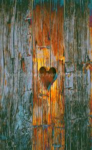 Board of Loving You