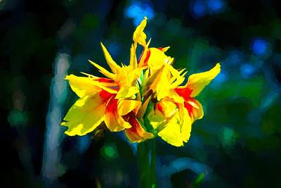Kiss Me Yellow