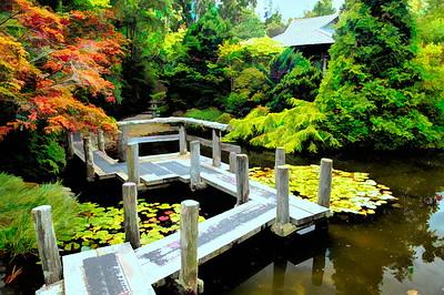Bridge Accross the Water