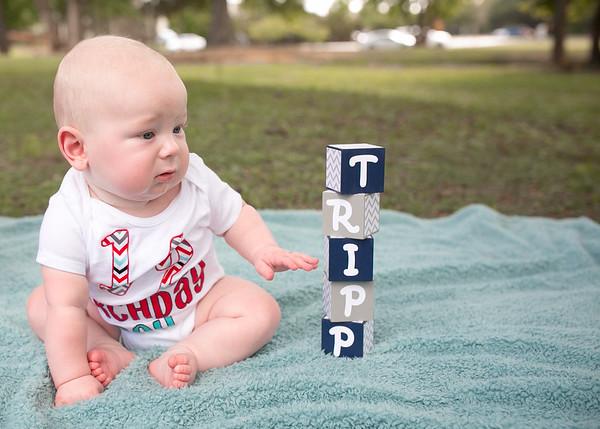 TRIPP-015