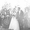 WEDDING-PARTY-078