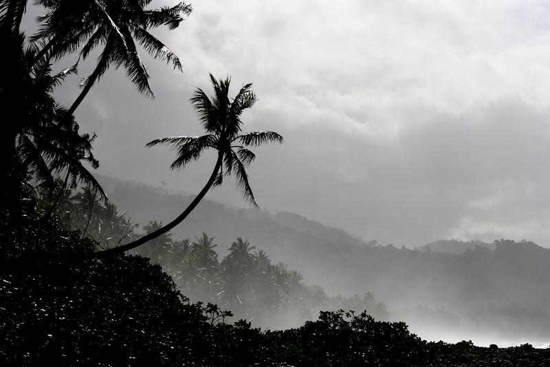 Along the Weather Coast