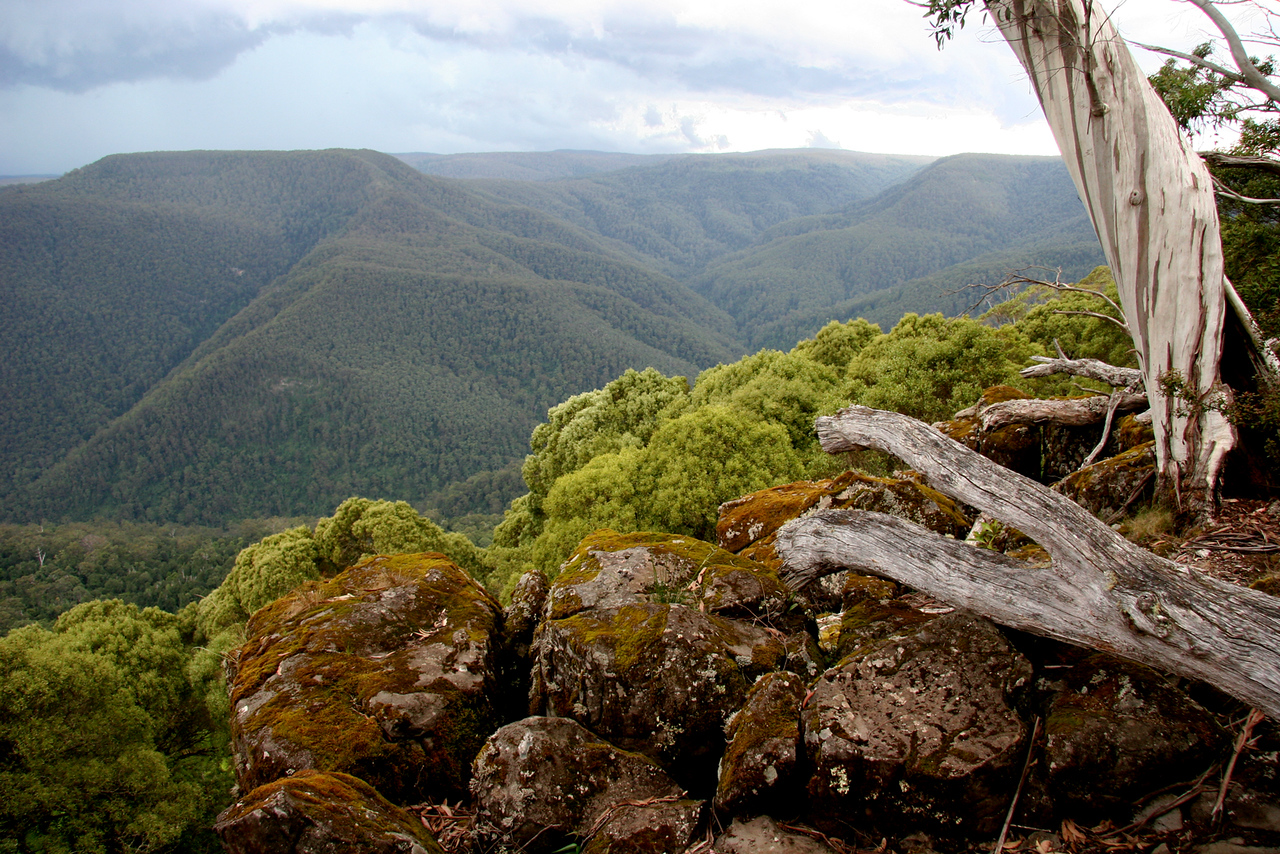 Bushranger's Lookout, Barrington Tops