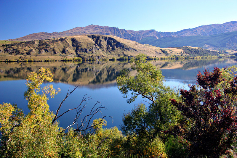 Otago in all her Splendour