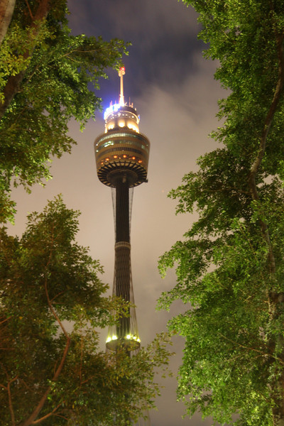 Sydney Tower at Midnight