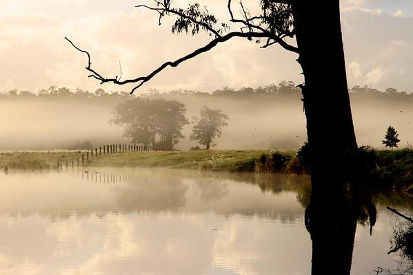 Australian Morning, Imbil Imbil Lagoon