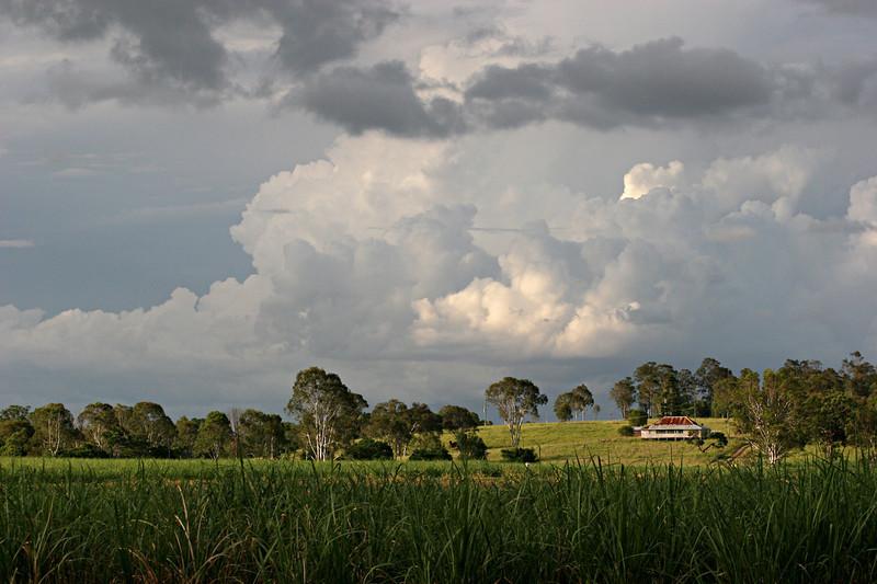 Queensland Summer