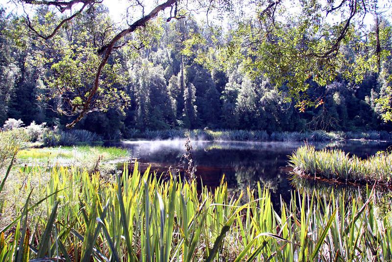 Lake Matheson Fantasia