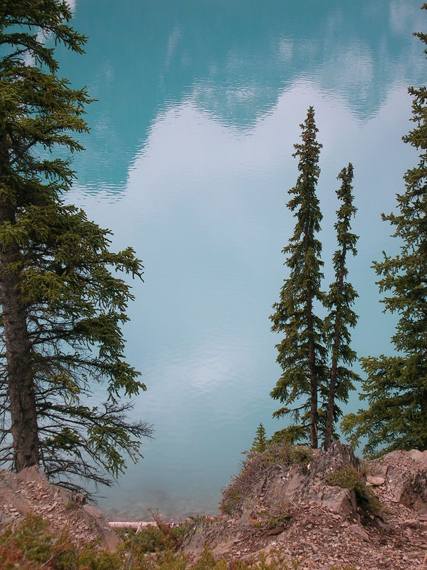 Moraine Lake. The water is REALLY this vivid Crayola-blue-green color, because of the sediment from the glacier runoff.