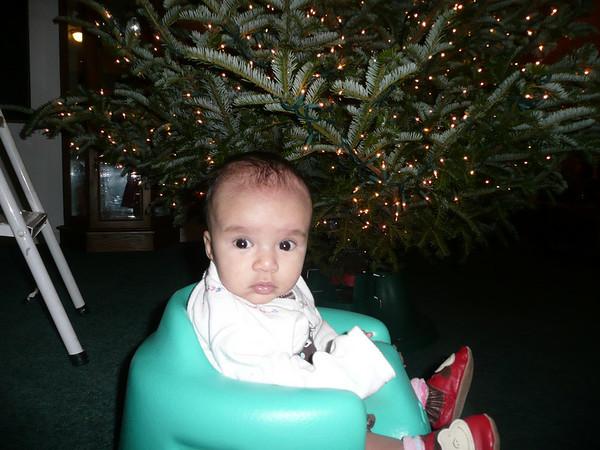 Decorating the Christmas tree 12/2/08