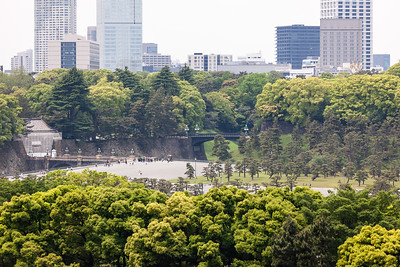Kokyo Gaien of Imperial Palace
