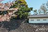 Fujimi-Tamon Defense House