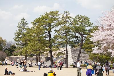 Tenshu-dai in Spring