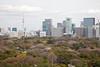 Higashi-Koen with Cityscape