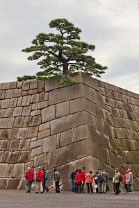 Japanese Tourists at Tenshu-dai