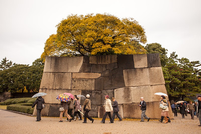 Japanese Tourists in Higashi-Koen