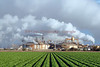 Cal Energy Geothermal Plant - Imperial Valley, Ca