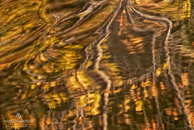 Impressionistic Blur of Autumn Tree Reflections, Muskoka, Ontario, Canada