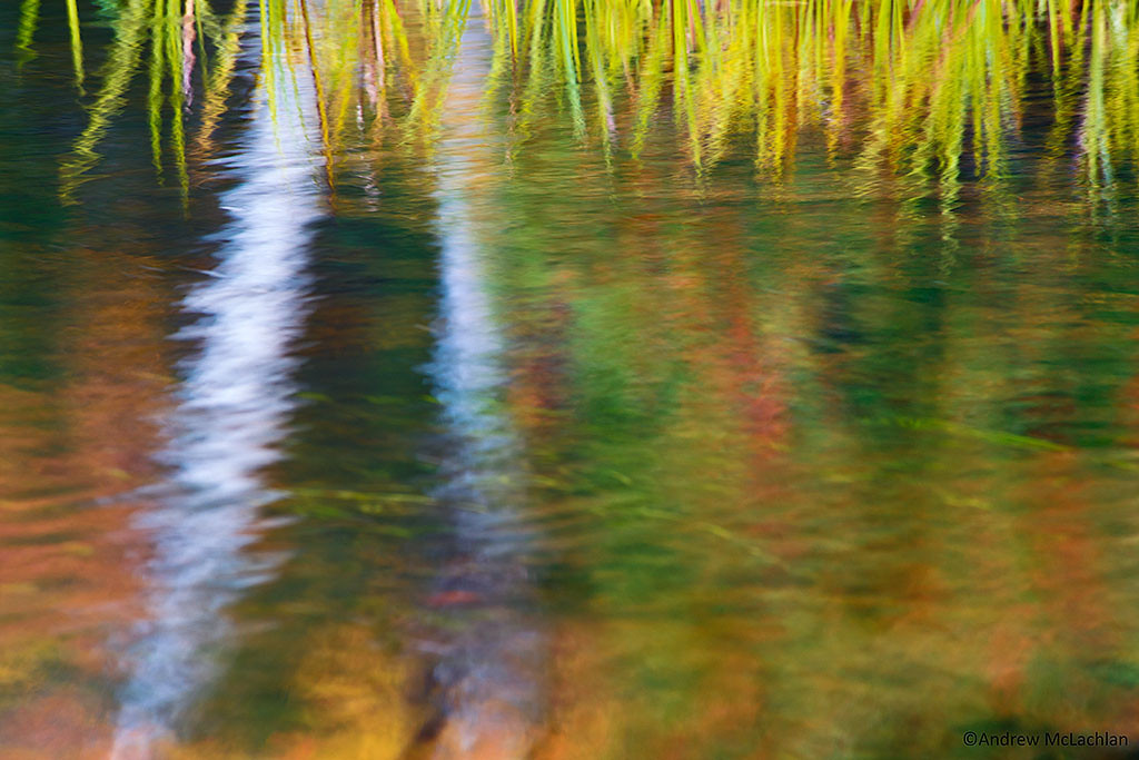 Reflection Blur in the Oxtongue River