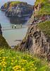 NORTHERN IRELAND-CARRICK-A-REDE ROPE BRIDGE