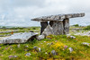 REPUBLIC OF IRELAND-THE BURREN-POULNABRONE DOLME-PASSAGE TOMB