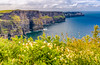 REPUBLIC OF IRELAND-CLIFFS OF MOHER