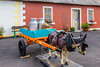REPUBLIC OF IRELAND-ARDMORE-DONKEY CART