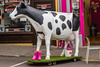 REPUBLIC OF IRELAND-RING OF KERRY-KENMARE-PLASTIC COW