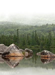 Foggy Sandy Stream Pond
