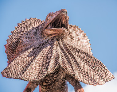 Frilled Necked Lizard Statue