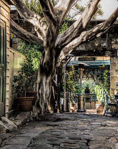 Heratage Walkways in Sydney