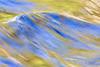 100919_5DMII_18668