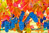 ART - Vineyard Impressions - Autumn #66 - 2012