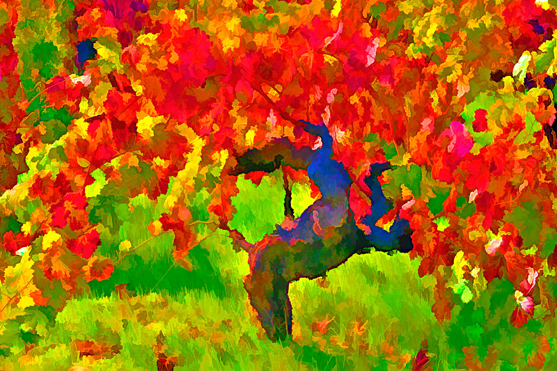 ART - Vineyard Impressions - Autumn #8