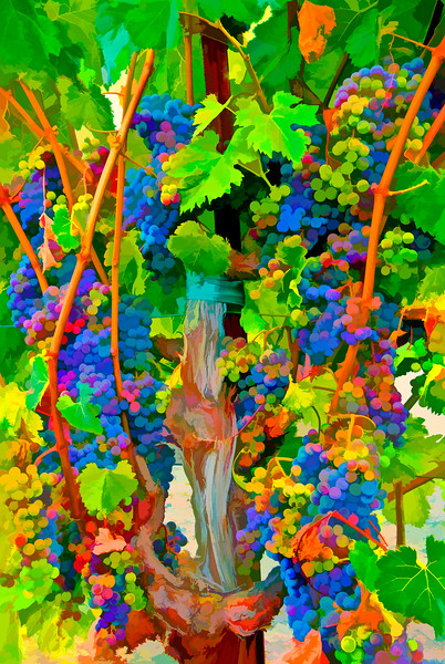 ART - Vineyard Impressions - Summer #7