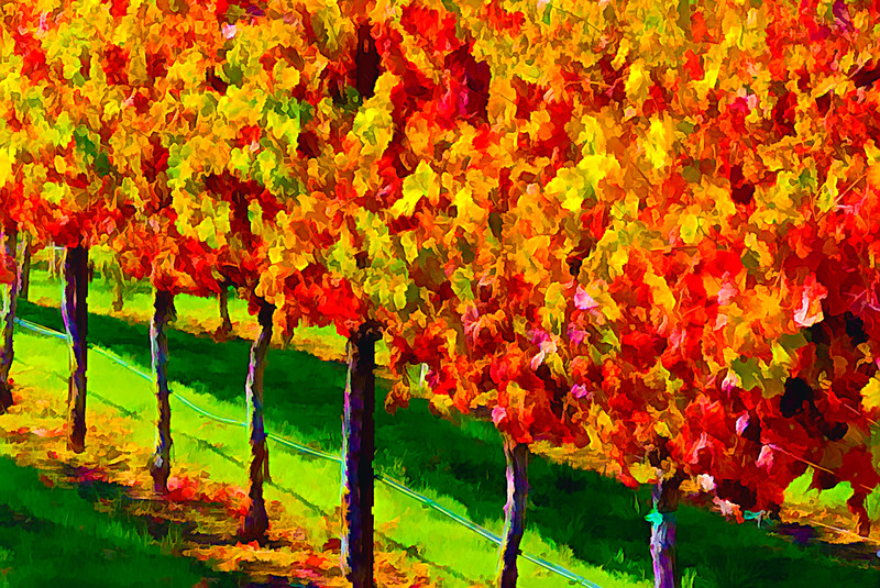 ART - Vineyard Impressions - Autumn #6