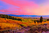 Teton Autumn Sunset with Aspens #2