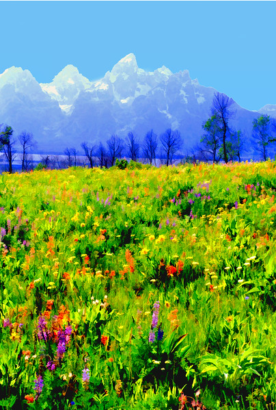 Wildflowers with Tetons #3
