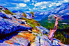 ART-Yosemite View above Lake Tenaya with bristlecone #1