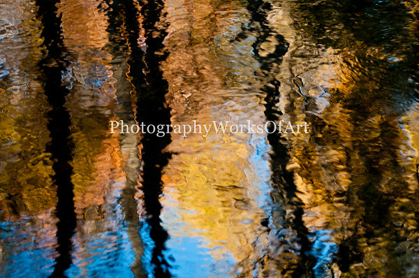 Stream Reflection
